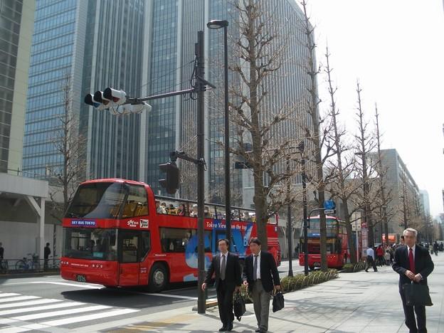 20100406_スカイバス東京
