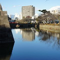 Photos: 小田原城06
