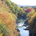 高津戸峡紅葉