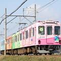 写真: 養老鉄道600系(養老改元)
