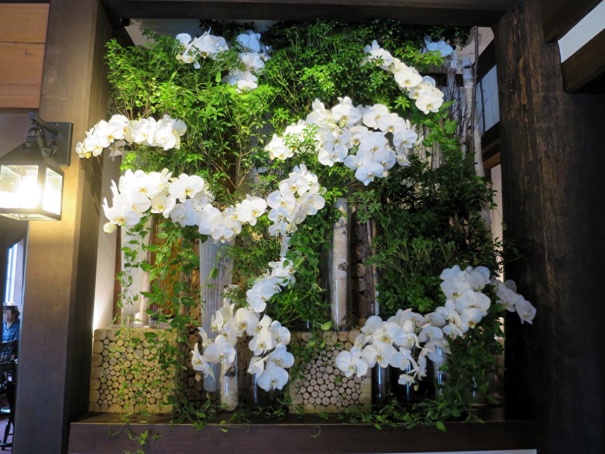 5ホルンお花