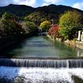 2017_1111_104724 嵐山