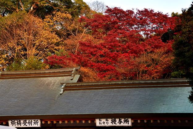 Photos: 2017_1202_155922_石清水八幡宮