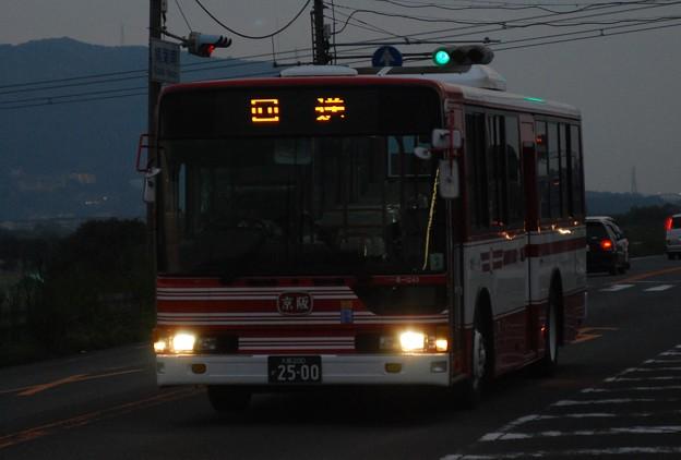 2010_1107_170823 B-1243