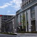 京町筋 新緑_02