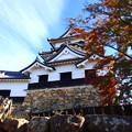 秋空の彦根城