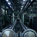 写真: 牛乳生産工場