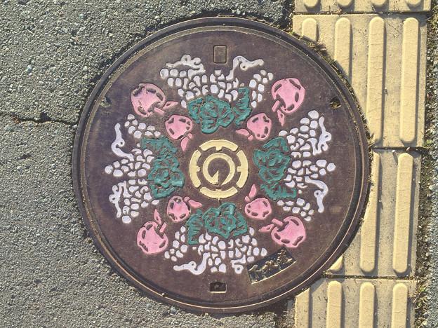 マンホール 長野県長野市旧豊野町2 カラー