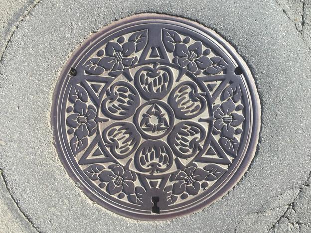 マンホール 長野県飯綱町旧三水村