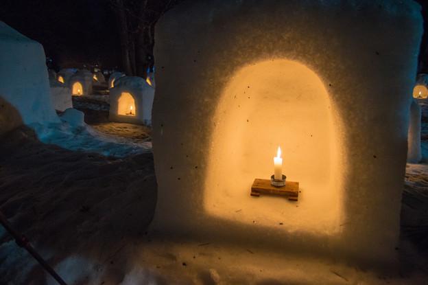 写真: 弘前城雪燈籠まつり