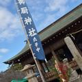 Photos: 晴天 1月3日
