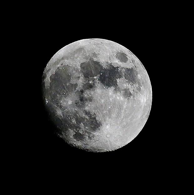 Photos: 月齢 12.2 ~2014年11月5日の月~ ミラクルムーン