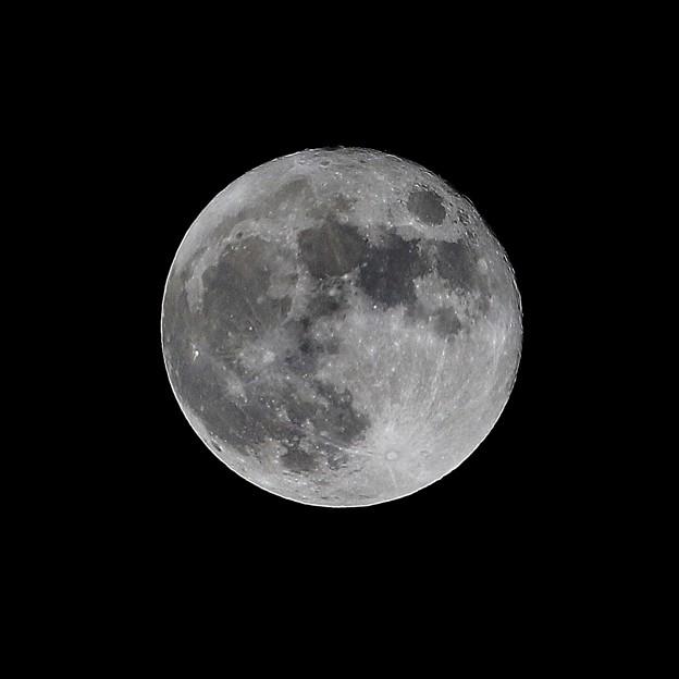 Photos: 満月~2014年11月7日の月~