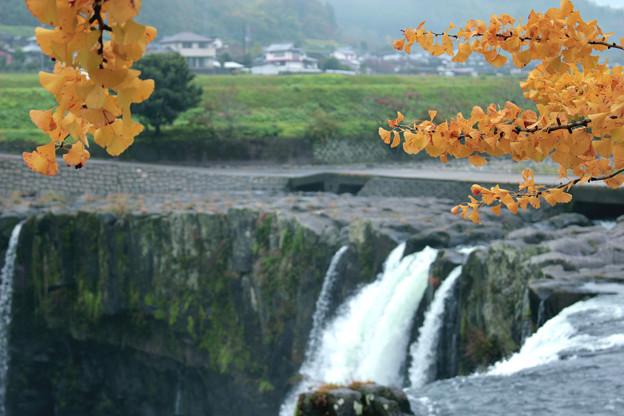 「原尻の滝」の秋1