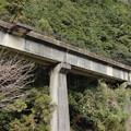 写真: 八戸観音滝前の線路跡1
