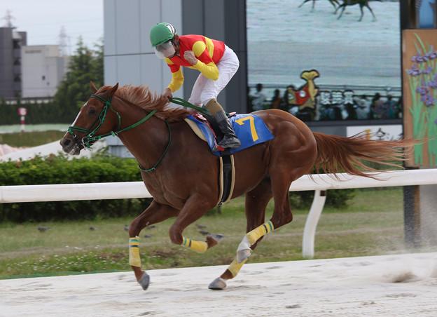 ドリームズライン レース_2(17/05/04・中日スポーツ杯 第56回 駿蹄賞)