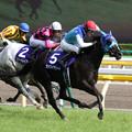 写真: アドマイヤリード レース_1(17/05/14・第12回 ヴィクトリアマイル)