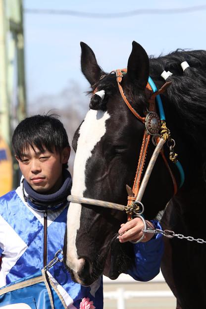 シンエイシルビア 口取り_3(17/03/20・1R)