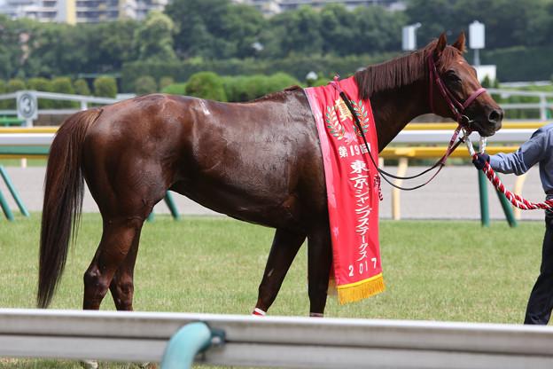 シンキングダンサー(17/06/24・第19回 東京ジャンプステークス)