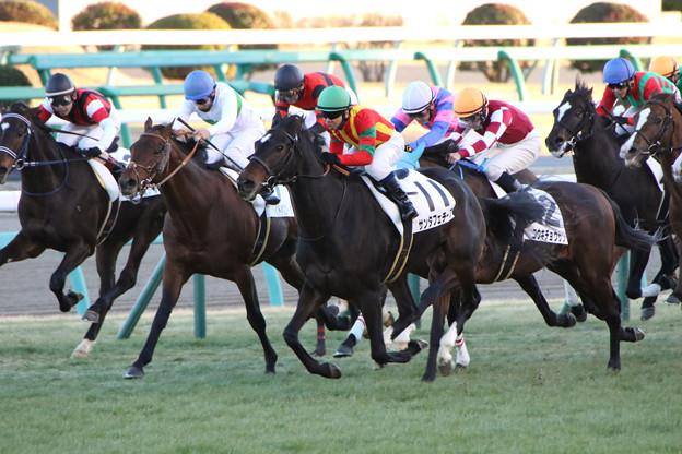 サンタフェチーフ  レース(17/01/15・12R)
