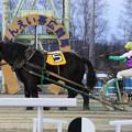 写真: キンリュウザン レース(17/11/25・4R)