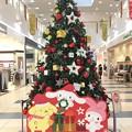 クリスマスツリー アリオ蘇我
