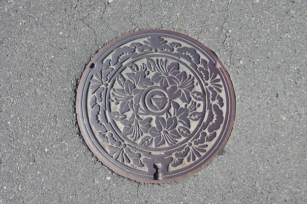Photos: s6367_松本市旧波田町マンホール