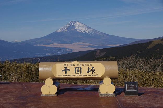 s1104_十国峠看板バックの富士山