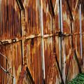 写真: 錆と緑の侵食