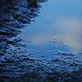 雨上がりの朝の空
