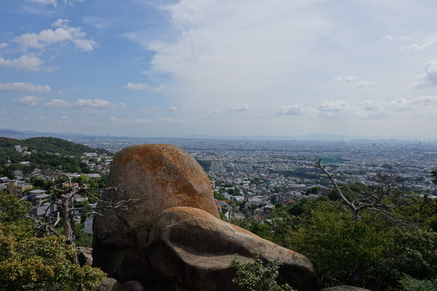 北山公園岩山頂き