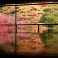 写真: 瑠璃光院