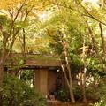 写真: 北山山荘門