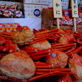 写真: 初奉納香住蟹