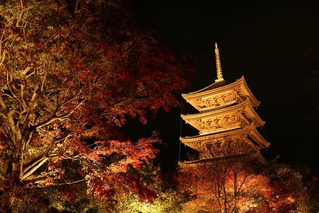 東寺の紅葉とライトアップ