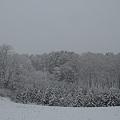 Photos: Snow Scene2
