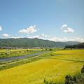 写真: 飯田線80周年リレー号#1