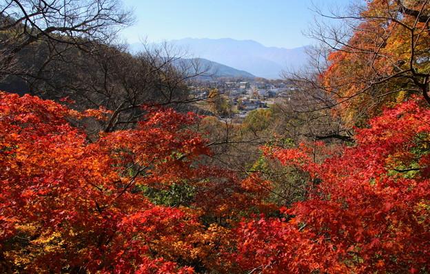 高遠城址公園の紅葉と中央アルプスの山並み