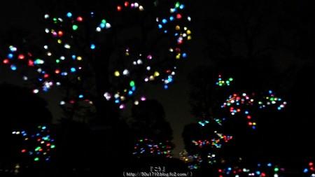 ひかりの実inジョイナス(夜) (5)