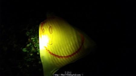 ひかりの実inジョイナス(夜) (18)