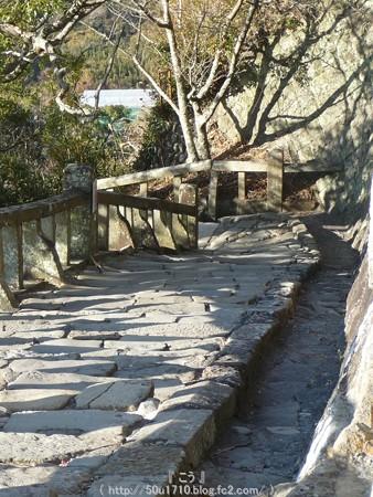 150108-久能山東照宮 参道 (66)