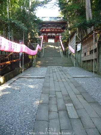 150109-久能山東照宮 (2)