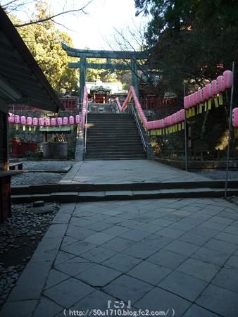150109-久能山東照宮 (21)