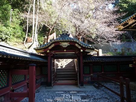 150109-久能山東照宮 (51)