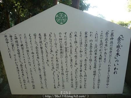 150109-久能山東照宮 (66)