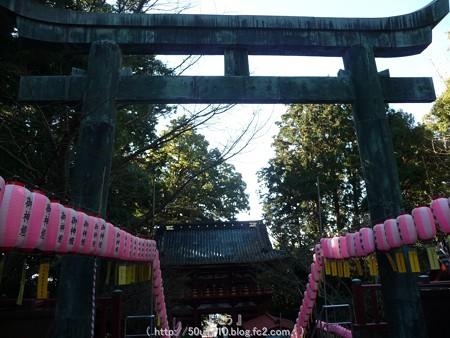 150109-久能山東照宮 (87)