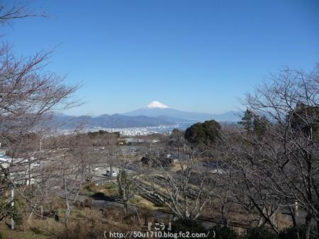 150109-日本平 (18)