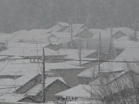 150130-雪 (9)