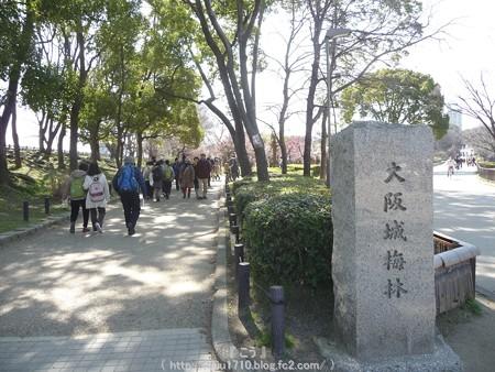 140308-大阪城梅林 (15)