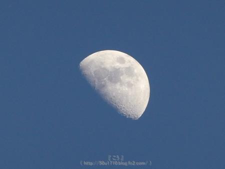 170504-お月さん (1)